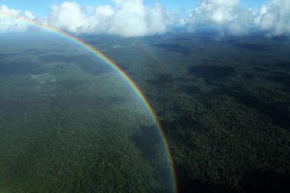 Arco-íris sobre a Floresta Amazônica (Foto: Sérgio Vale)