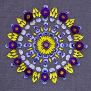 Mandala de flores de Kathy Klein