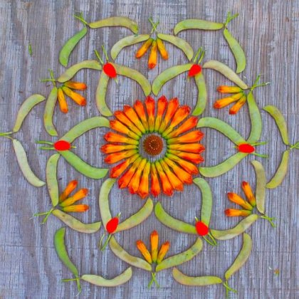 Mandala de Kathy Klein
